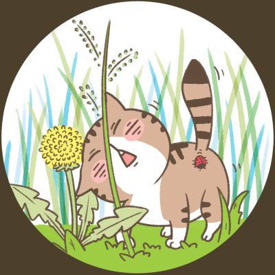 猫が草を食べる